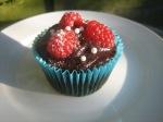 Chocolate Summer Fruit Cupcake