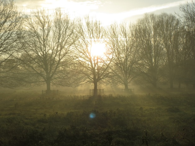 Stourbridge Common Late Nov - mist